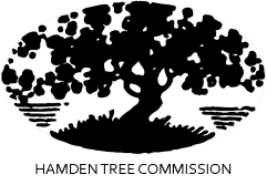 Hamden Tree Commission