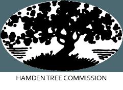 Hamden Tree Commission